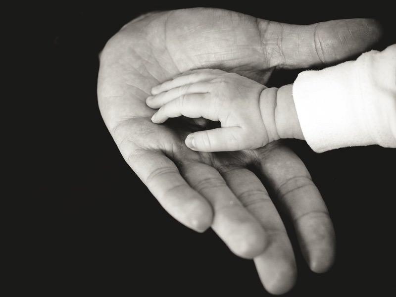 Hands 918774 960 720